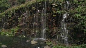 Tir au ralenti aérien d'une cascade dans une forêt à feuilles persistantes en Géorgie banque de vidéos