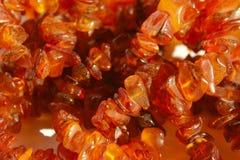 Tir cultivé d'Amber Beads image libre de droits