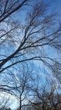Tir de ciel Photos libres de droits
