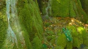 Tir de inclinaison diagonal de la cascade unique de Bigar en Roumanie banque de vidéos