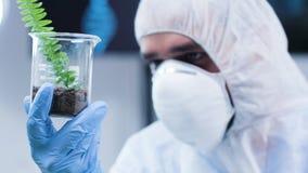 Tir de indication de chariot du biologiste dans la combinaison blanche analysant un échantillon de plante banque de vidéos