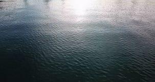 Tir de la surface de l'eau bourdon 4K clips vidéos
