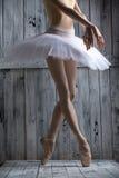 Tir de studio, ballerine gracieuse de jeunes jambes Images libres de droits