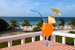 Tir en gros plan de l'orangeade sur le dos de plage, de mer et de ciel photographie stock libre de droits