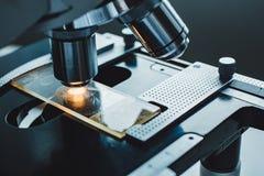 Tir en gros plan de microscope Photographie stock libre de droits