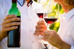 Tir en gros plan des couples supérieurs buvant du vin rouge Image libre de droits