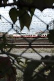 Tir en mouvement de train par une barrière photo stock