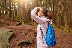 Tir extérieur d'explorateur enthousiaste touchant son front avec la main, couvrant ses yeux des rayons du soleil, regardant loin  photo stock