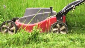 Tir haut étroit de couper l'herbe avec la tondeuse à gazon électrique banque de vidéos