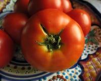 Tir horizontal de tomate ressemblant au sein de la femme Image stock