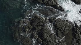 Tir indietroare sulle rocce d'esplorazione del cane e dell'uomo dall'oceano stock footage
