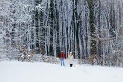 Tir intégral des couples affectueux heureux tenant des mains et le fonctionnement le long du temps neigeux pelucheux de Noël de f Photographie stock libre de droits
