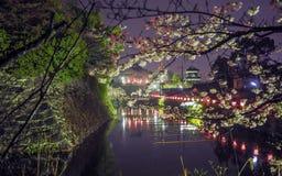 Tir japonais de nuit de château et de fossé Photographie stock
