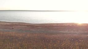 Tir a?rien du jeune fonctionnement sportif de femme ext?rieur pr?s du lac ou du liman pendant le beau lever de soleil ou coucher  banque de vidéos