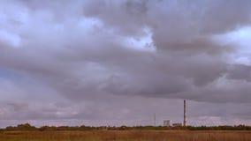 Tir spécifique des cieux nuageux gentils et du champ de blé vides et purs, avant la pluie, temps bleu-foncé, vibraphone orageux banque de vidéos