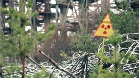 Tir statique de changement de foyer de signe de rayonnement dans la forêt clips vidéos