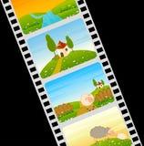 Tira colorida de la película en blanco con las ovejas Fotos de archivo libres de regalías