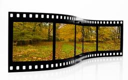 Tira de la película del otoño Imagen de archivo libre de regalías