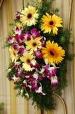 tirado de la flor Imagen de archivo libre de regalías