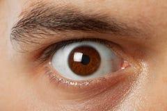 Tirado de ojo del marrón del hombre joven Foto de archivo libre de regalías