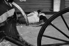 Tiradores del carrito en Kolkata imagenes de archivo