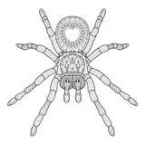 Tiraggio della mano del ragno nello stile di Zentangle Illustrazione di vettore Illustrazione Vettoriale