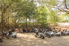 Motorbike parking under the green banyan trees stock images