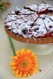 Tiramafruit pie Royalty Free Stock Image