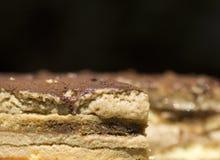 Tirami su - cake, close up Royalty Free Stock Photography