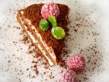 tiramisu десерта Стоковое Фото