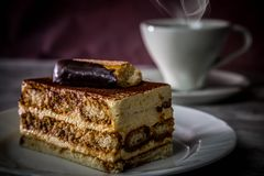tiramisu торта классицистическое свежее традиционное Итальянка, печенье Стоковые Фотографии RF