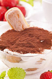Tiramisu Stock Photography