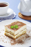 Tiramisu Royalty Free Stock Photos