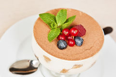 Tiramisu with berries Stock Image