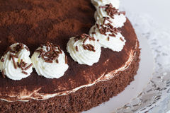 Tiramisu cake  as Cut Royalty Free Stock Photo