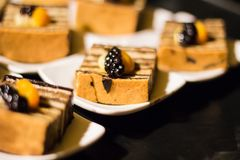 Tiramisu Cake. With blackberry orange Stock Image