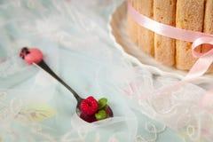 Tiramisu cake charlotte decorated with raspberry Royalty Free Stock Images