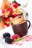 Tiramisu cake in chocolate cup Royalty Free Stock Image