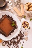 Tiramisu cake. Tiramisu cake with coffee bean on white dish royalty free stock photography