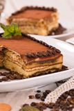 Tiramisu cake. Tiramisu cake with coffee bean on white dish royalty free stock photo