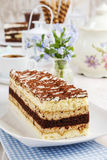 Tiramisu cake at the party table Stock Image