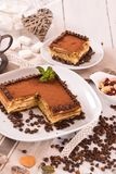 Tiramisu cake. stock photos