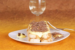 Tiramisu cake served on a white plate Royalty Free Stock Image