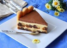 Tiramisu cake (skivan) Arkivfoton