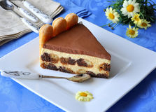 Tiramisu cake (slice) Stock Photos