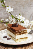 Tiramisu cake on white plate Royalty Free Stock Images