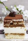 Tiramisu cake on white plate Royalty Free Stock Image