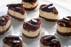 Tiramisu cakes royalty free stock image