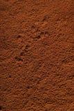 Tiramisu-cocoa. Fresh cooking tiramisu dessert close-up top Stock Photos