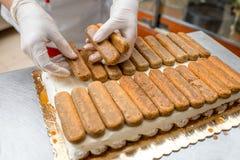 Tiramisu cookies Stock Photography